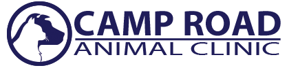 Camp Road Animal Clinic